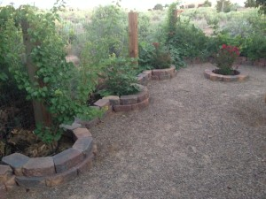 These decorative borders have vegetables and herbs planted at this NM home